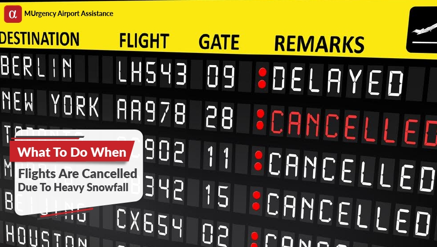 flights cancelled what to do, delayed flight what to do, cancelled flight heavy snowfall, heavy snow
